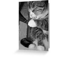 Bathing Beauty Black & White Greeting Card