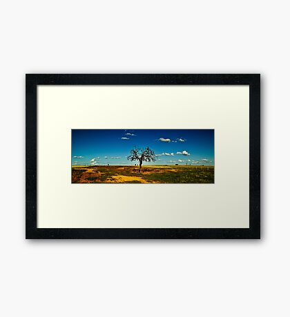 Sparse Tree Again - Parkes, NSW Framed Print