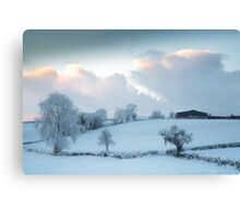 Winter trees at Dawn Canvas Print