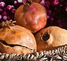 Pomegranate by Clockworkmary