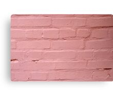 Fragment of a pink wall closeup Canvas Print