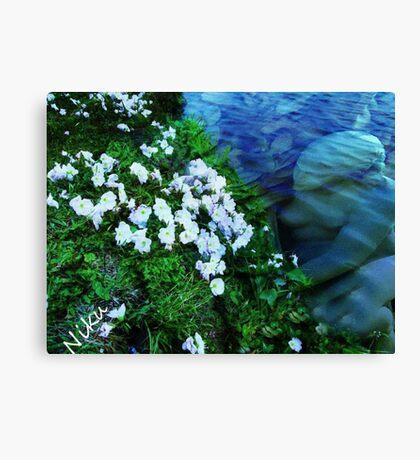 Sea Angel Canvas Print