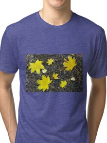 Several yellow autumn maple leaves Tri-blend T-Shirt