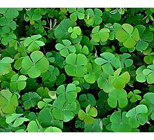 The Luck Of The Irish Photographic Print