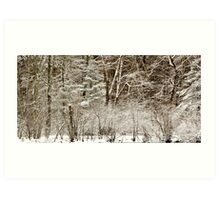 A fine Winter Coat Art Print
