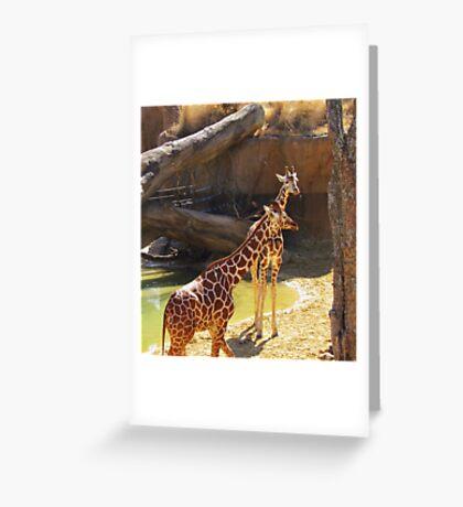 wild animals-friends Greeting Card