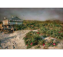 Gooseberry Beach Plum Photographic Print