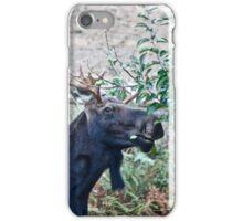 Moose Buffet iPhone Case/Skin