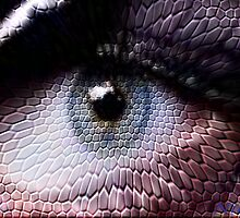wild animals-eye by NIKULETSH