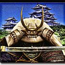 Shogun by Richard  Gerhard