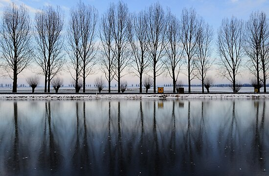 Mirror of ice by Javimage
