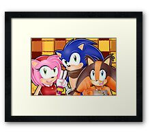 Sonic Boom: Sonic, Amy Rose and Sticks Framed Print