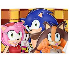Sonic Boom: Sonic, Amy Rose and Sticks Poster