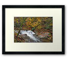 Laurel Creek Cascades III Framed Print
