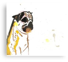 Pipetted Pug Canvas Print