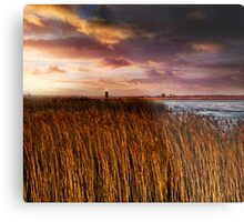 Norfolk Rising Metal Print