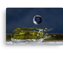 Drop of Water splashing, close up Canvas Print