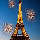 Wishing You A Very Happy New Year by Mathieu Longvert