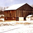 Barn in the Winter by vigor