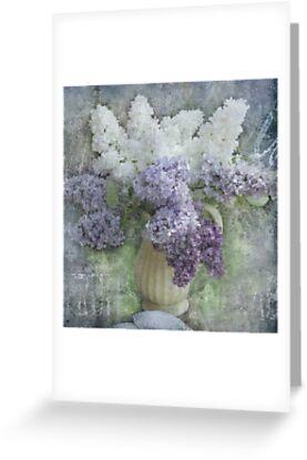 Lilacs by Jeff Burgess