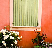 Shutter with window box green  by KSKphotography