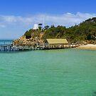 Point King Paradise by Sam Sneddon