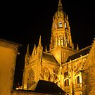 The Bayeux Cathedral at Night  (2) by Larry Davis