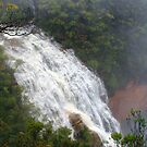 Wentworth Falls NSW by Doug Cliff