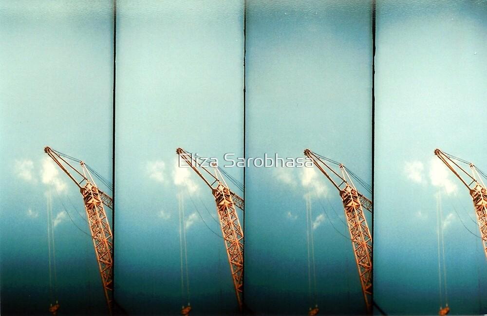 Scrape the Sky by Eliza Sarobhasa