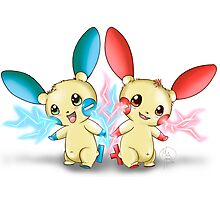 Pokemon: Plusle and Minun Attack Together! Photographic Print