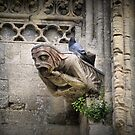 The Bayeux Cathedral (3)  by Larry Lingard-Davis