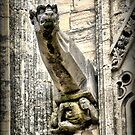 The Bayeux Cathedral (4) by Larry Davis