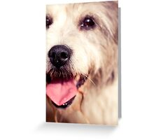 Peggie Nose Greeting Card