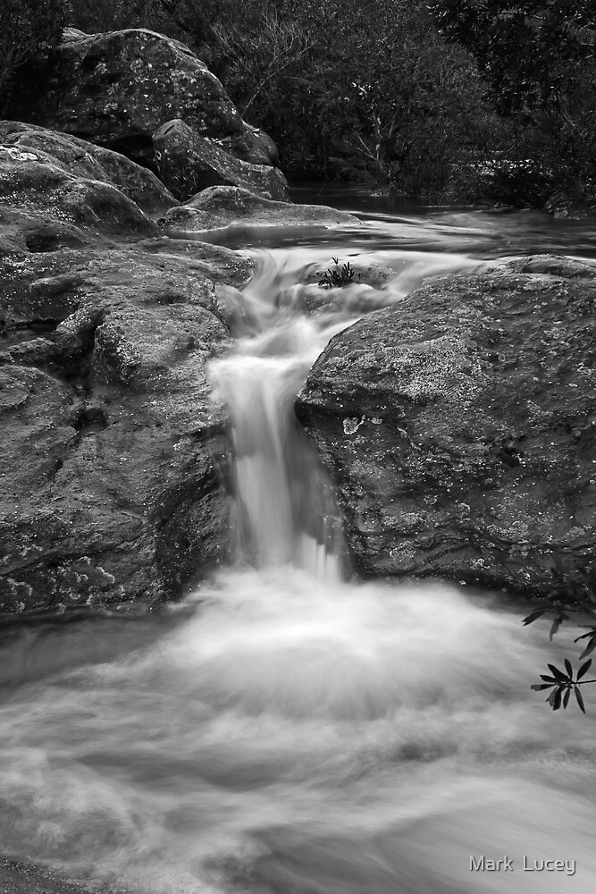 Cracked Rock by Mark  Lucey