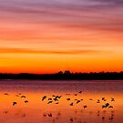 Red Dawn by JRRouse