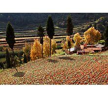 Autumn Farmland Photographic Print