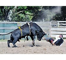 OMG! that's one big bull !! Photographic Print
