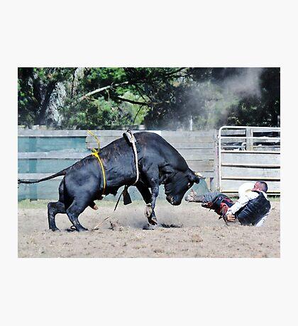 OMG! that's one big bull !! Photographic Print