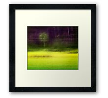 Mitchell Park ~ the impressionist's view II Framed Print