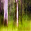 Mitchell Park ~ an impressionist's view III by Adriana Glackin