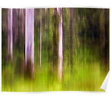 Mitchell Park ~ an impressionist's view III Poster