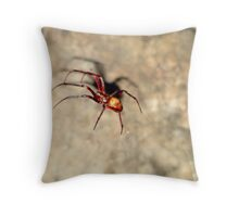 Chedder cave Spider. Throw Pillow