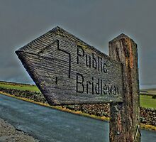 Pendle Hill Bridleway by ian littler
