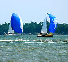 Sail Boats in Charleston Bay by imagetj