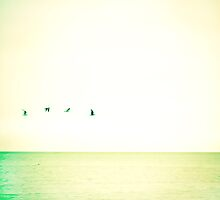 Flight 2.0  by Elina  Cate