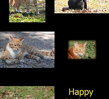 Happy Birthday Cats by DebbieCHayes