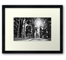 The sun and the snow Framed Print