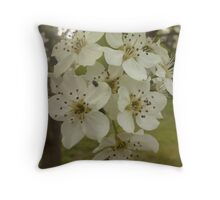 Bradford pear a bloom  Throw Pillow