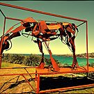 Sculpture by the Sea 2015 20 by andreisky