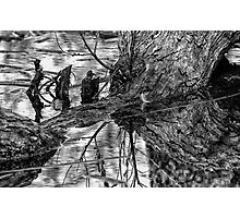 Dark Reflections Photographic Print